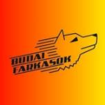 Budai Farkasok